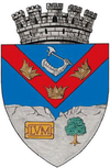 Coat of Arms of Turda