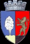 ROU MS Tarnaveni CoA.png