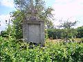 RO BH Monumentul din Topa de Cris (5).jpg