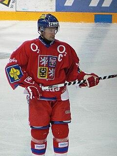 Radek Hamr Czech ice hockey player