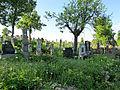 Rajac, staro seosko groblje 07.JPG