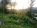 Rajoya View - panoramio.jpg