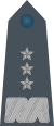 Rank insignia of generał broni of the Air Force of Poland.svg