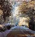 Rectory Lane in winter snow circa 1980 - geograph.org.uk - 1095048.jpg