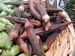Red Okra Pods.jpg