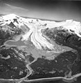 Reef Glacier, Four Peaked Mountain and Mount Douglas, valley glacier terminus, and trimline along valley walls, August 26, 1969 (GLACIERS 6651).jpg