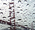 Refraction of Golden Gate Bridge in rain droplets.jpg