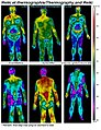 Reiki-thermography-little.jpg