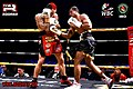 Ringstar fights-253-7.jpg