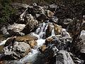Rishikesh harikempty fallsdwar (389).JPG