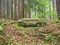 Ritterstein 128 Krottenbuckel.JPG