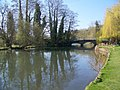 River Avon, Upper Woodford - geograph.org.uk - 757042.jpg