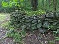 Rockwall-tyson-mccarter-tn1.jpg