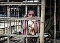 Rohingya displaced Muslims 012.jpg