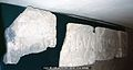 Roman Inscription in Italy (EDH - F023185).jpeg