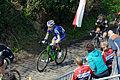 Ronde van Vlaanderen 2015 - Oude Kwaremont (16432309224).jpg