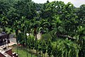 Roof view of Shahjalal Hall at University of Chittagong (07).jpg