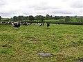 Roseside Townland - geograph.org.uk - 528967.jpg