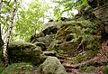 Rotkehlchenstiege - Elbsandsteingebirge - panoramio (2).jpg