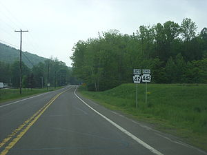 Pennsylvania Route 442 - Pennsylvania Route 442 approaching its eastern terminus at Pennsylvania Route 42 near Iola.