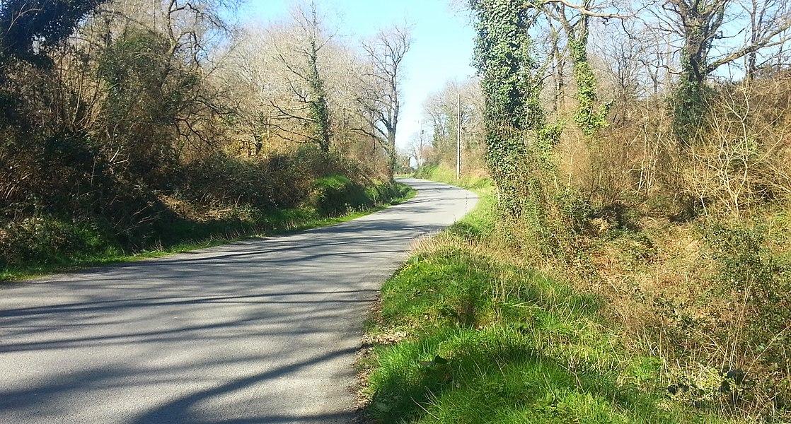 Route entre Noyal Muzillac et Lauzach