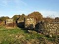 Ruin above Abermawr - geograph.org.uk - 685866.jpg