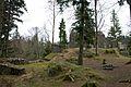 Ruine Alt-Signau 1.jpg