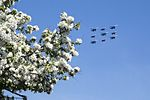 Russian Knights and Swifts - 2016 Moscow Victory Day Parade.jpg