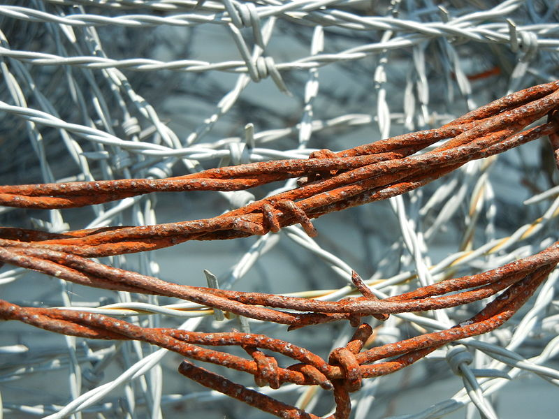 File:Rusty Barbed Wire.jpg