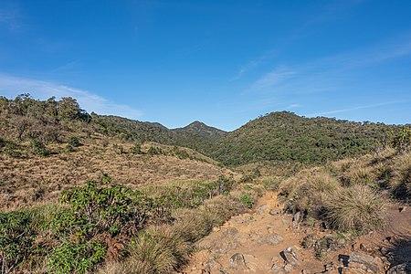 Horton Plains landscape