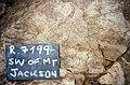SW of Mt Jackson rhyolite plug.jpg