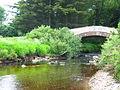 Saddell Water, Kintyre. - geograph.org.uk - 59221.jpg