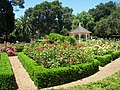 San Mateo Arboretum, San Mateo, CA - IMG 9075.JPG