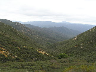 San Mateo Canyon Wilderness, südliche Santa Ana Mountains, April 2007.