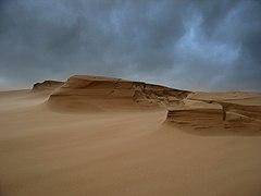 Sand storm on the Sands of Forvie - geograph.org.uk - 288824.jpg