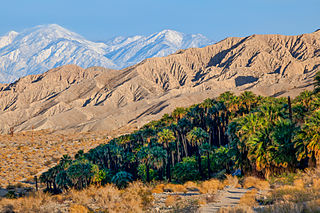 Sand to Snow National Monument protected area in California