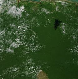 Satellite image of Suriname in September 2002.jpg