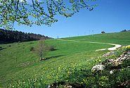 Scheltenpass