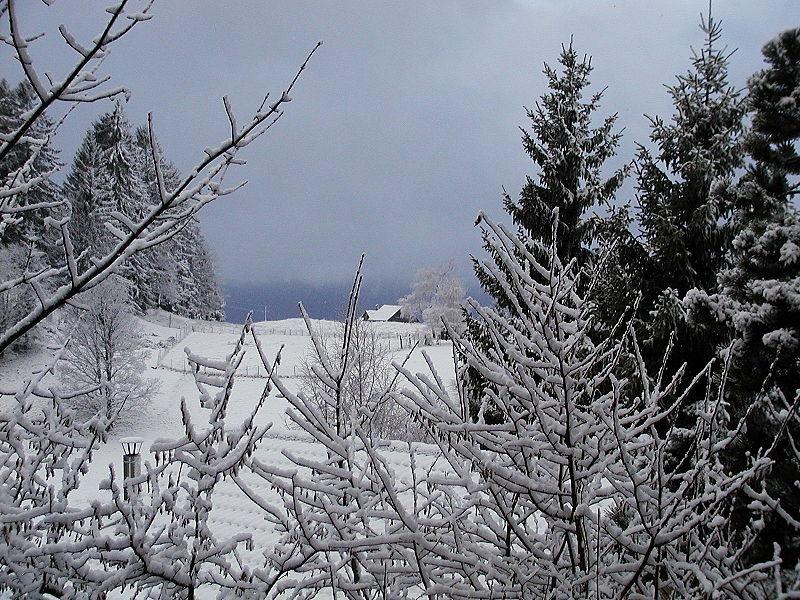 Ficheiro:Schneelandschaft Furx.JPG