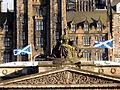 Scottish flags (3638799617).jpg