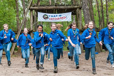 Image Result For Scout World