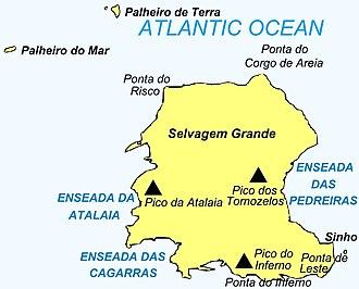 Selvagem Grande Island - Image: Selvagem Grande Island