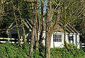 Shaver–Bilyeu House outbuilding - Tigard, Oregon.JPG