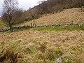 Side of Craigiau Llwyn-gwern - geograph.org.uk - 682750.jpg