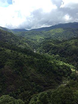 Silent Valleye2.jpg