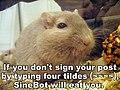 SineBot gerbil.jpg