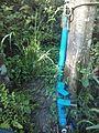 Sistema de riego con bomba de ariete, Pijijiapan, Chiapas 05.jpg
