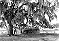 Small portion of original walls of citadel of fort, once occupied by General Oglethorpe, faces the Frederica River, GA. It is in (bbceb2c27e9b4efe9ea170986db2085b).jpg
