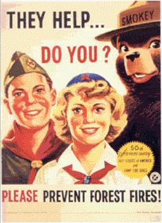 Scouting in popular culture