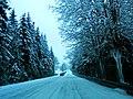 Sneh Podbanské 17 Slovensko10.jpg